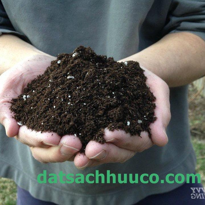 Đất sạch Namix có chứa các hạt Perlite giúp làm tăng độ xốp cho đất chậu