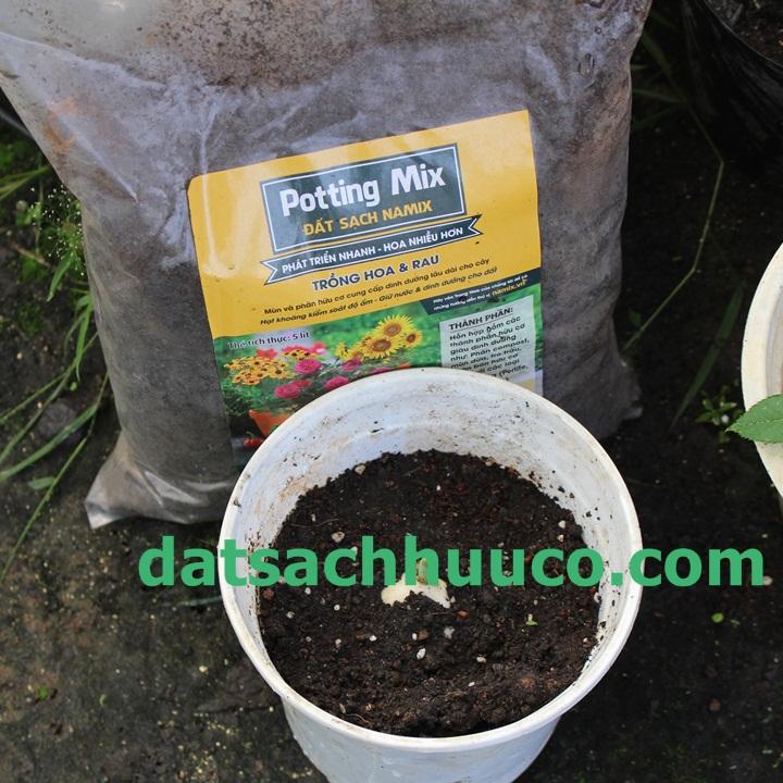 Cách trồng hoa Tulip. Đất sạch hữu cơ Namix