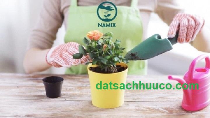 đất sạch trồng chậu namix